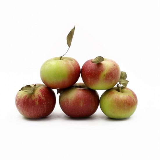 Яблоки , новый урожай